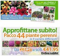Bakker offerte piante for Bakker piante perenni